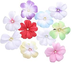 Faldón Flores canal denuncias Aspajunide